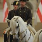 Spanish Riding School Performance