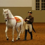 Work on the Long Rein, Chief Rider Andreas Hausberger