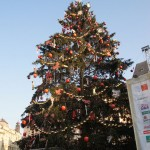 Old Town Square Christmas Tree by day