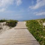 Sand Dunes Curonian Spit