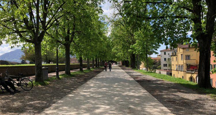 Lucca Walls Path