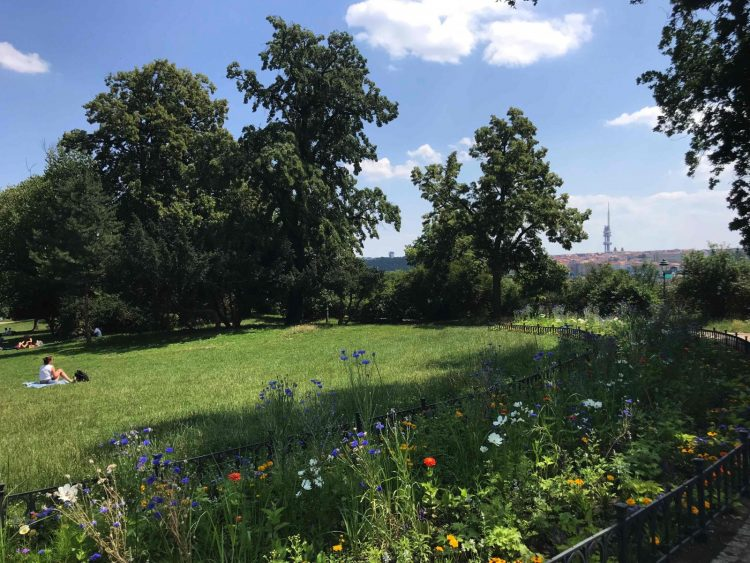 The View From Letna Park