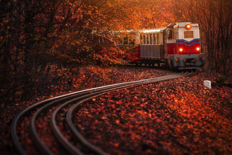 Budapest Children's Railroad