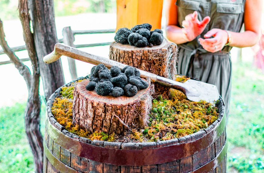 Unmissable Food and Wine Experiences in Istria