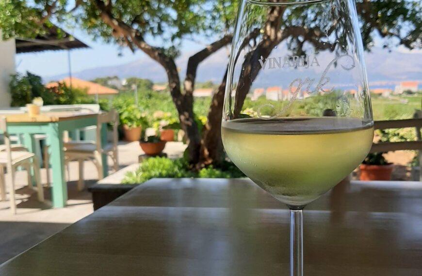 The Best Wineries Around Dubrovnik